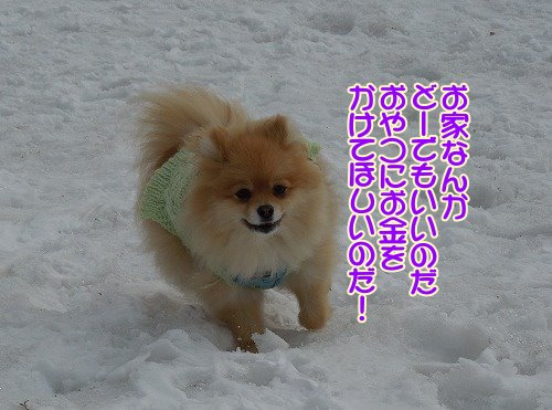 201200401_09.jpg