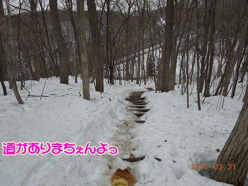 20120331_02.jpg