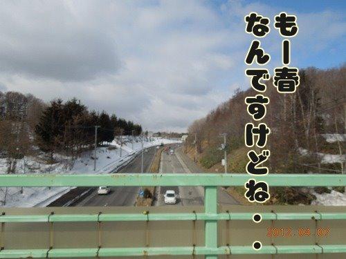 20120407_05.jpg