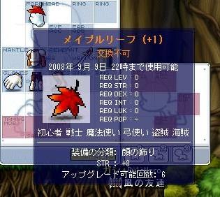 Maple0197.jpg