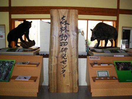 兵庫県森林動物研究センター