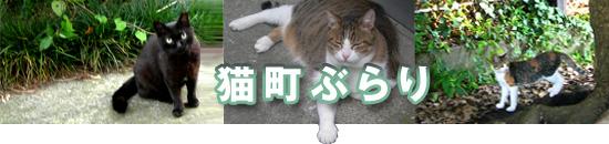 猫町ぶらり