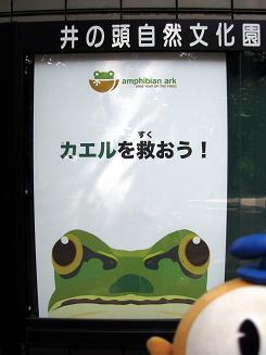 kittan poster blog