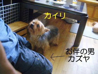 2008年08月15日_CIMG3801
