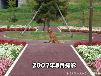 k-2008-8-21-8.jpg