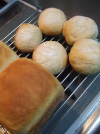 失敗ミルク食パン
