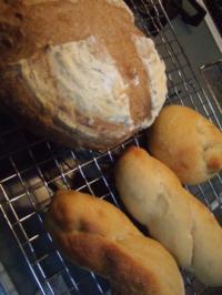 柿酵母のパン