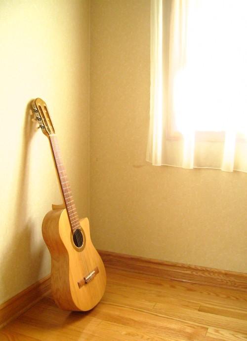 菊ギター7号 イメージ屋内窓