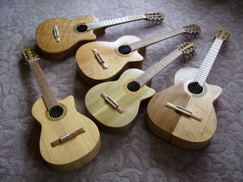 菊ギター集合5本屋内横に置いて