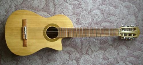 菊ギター第7号 全体表真横