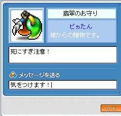 Maple3984.jpg