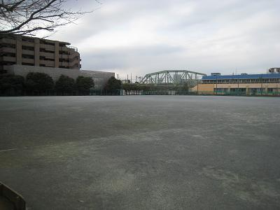 20110111_058.jpg
