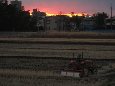 20110127_006.jpg