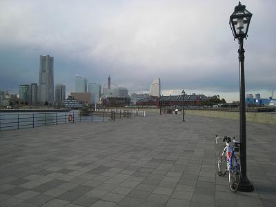 20110304_073.jpg