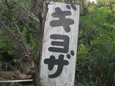 20110416_078.jpg