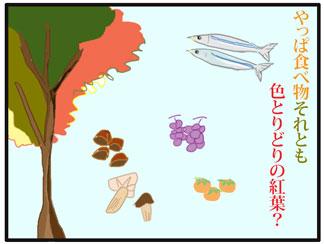 感じる秋02