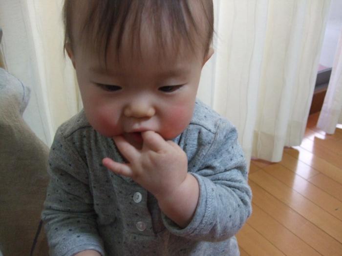 009_convert_20110217132741.jpg