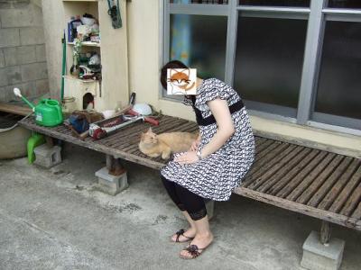 沖縄のネコさん