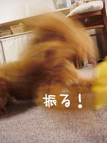 conv0121_20081023104510.jpg