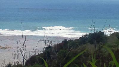 2011.8.27の土浜3