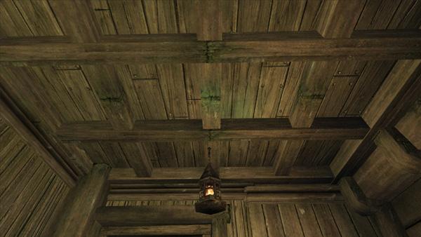 見知った天井