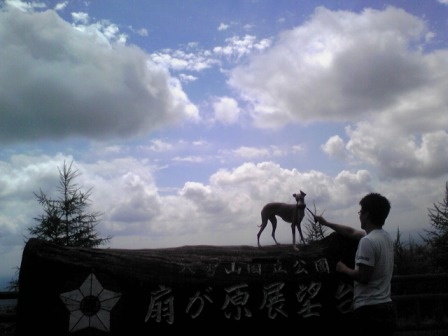 20080819_04.jpg