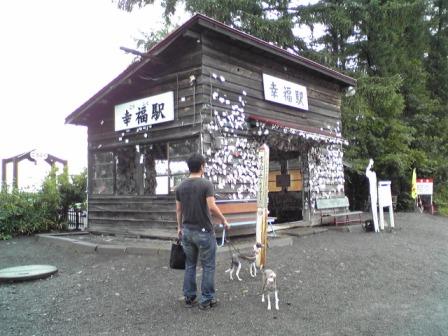 20080820_06.jpg