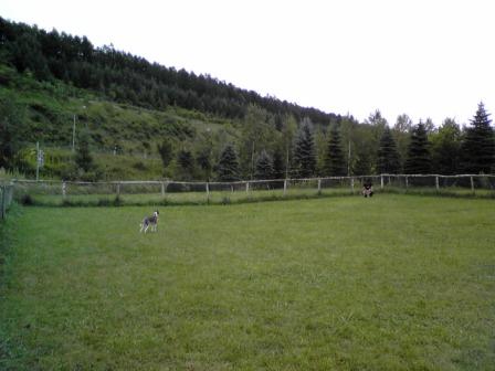 20080820_11.jpg