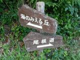 桧原公園2