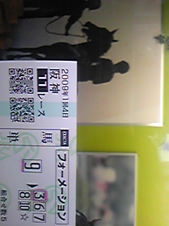 20090308-阪神11R