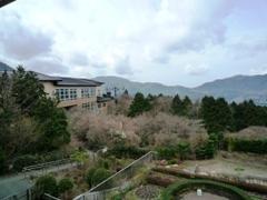 ホテルの部屋からの景色1