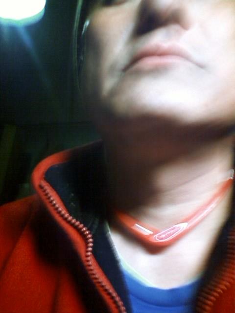 20120228kubiwa.jpg