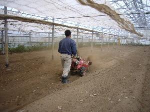2007年 トマト畝つくり