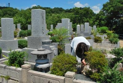 暑い中の墓参り