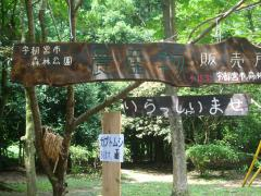 ☆森林公園直売所