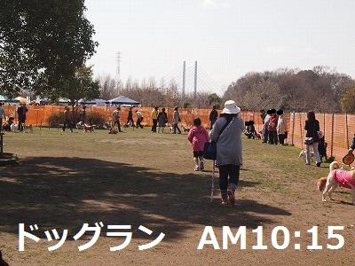 s-25P4010267.jpg