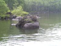 もじもじ岩1