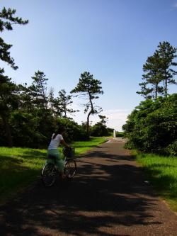 海の中道海浜公園サイクリング
