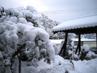 大雪が降った