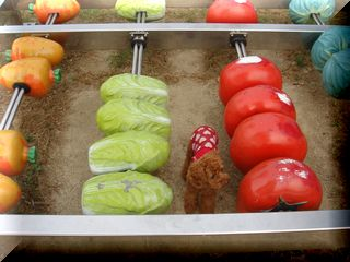 DSC00395野菜
