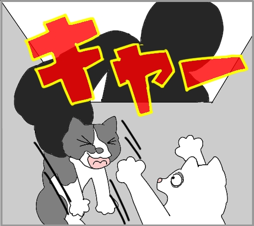 20110601-03.jpg