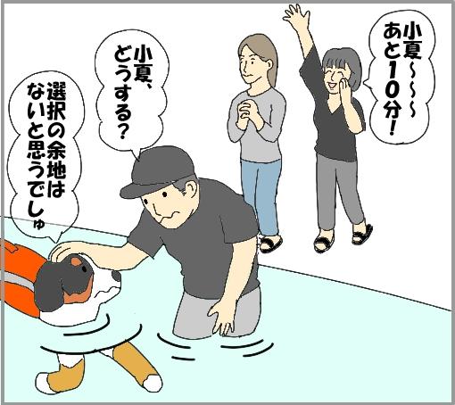 20110710-06.jpg