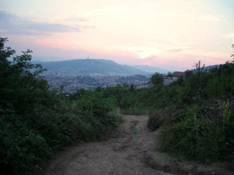 IMGP0576