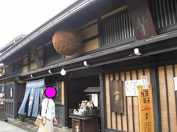 snap_korisunoheya_20096321311.jpg