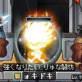 Maple120329_160538.jpg