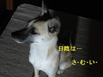 画像90104 0031
