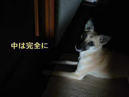 画像90104 0051
