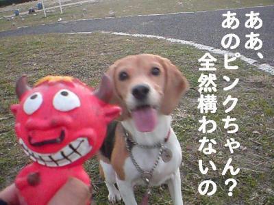 ピンクちゃん 1