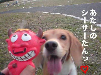 ピンクちゃん 4