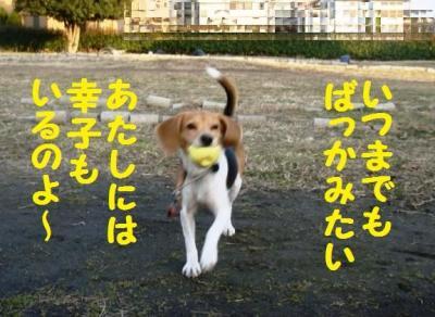 幸子サイコー
